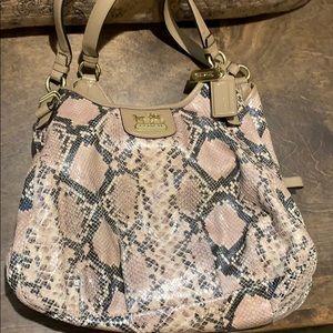 Snakeskin Coach purse